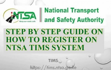 "Solved, ""KRA PIN Does Not Exist"" Issue on NTSA TIMS System @KenyanTraffic"