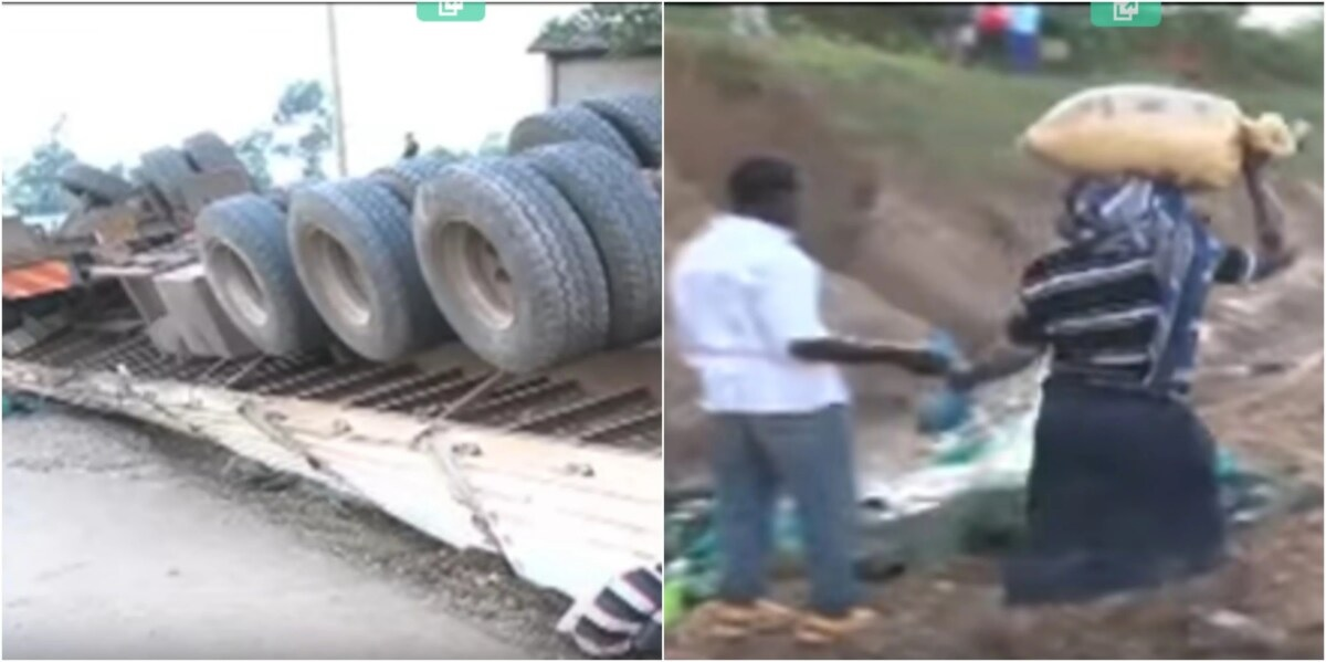 Video - People stealing bags of unga after a truck overturns on the highway